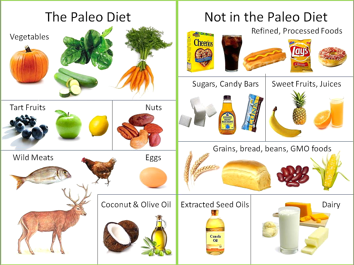 Whats The Paleo Diet 3