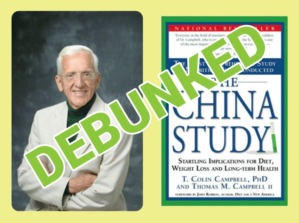 The China Study: Fact or Fallacy? | Denise Minger